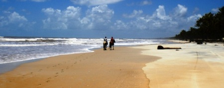 wintern, strand, beach, Bahia-tropical, Brazil